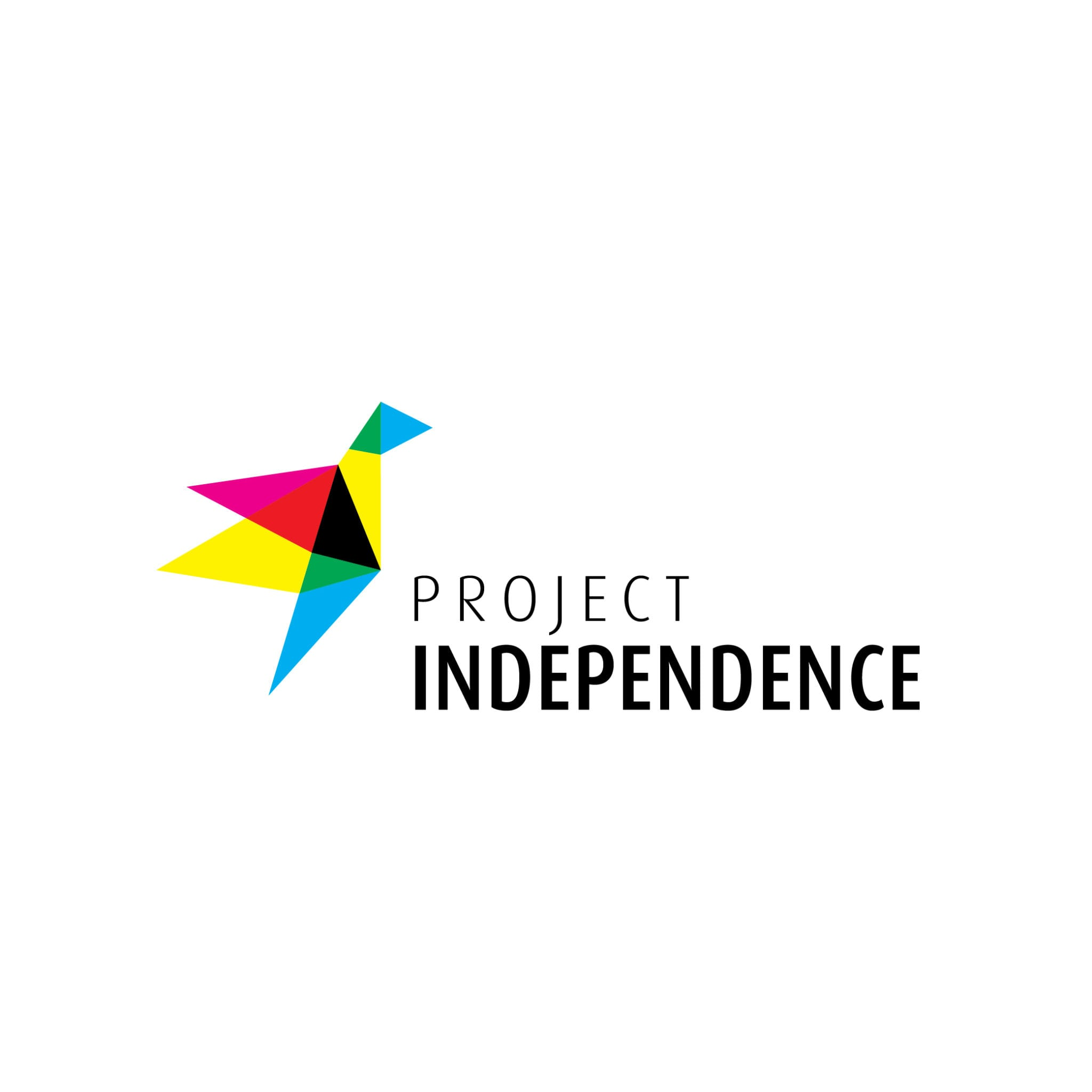 Project-Independence-Inspired-Adventures