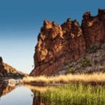 The Shepherd Centre's Outback Challenge 2021